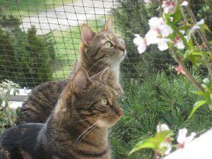 Lenny und Chiara von Brigitte